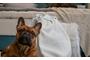Κάλυμμα Pet Friendly PRK-0650-0009 Efdeco